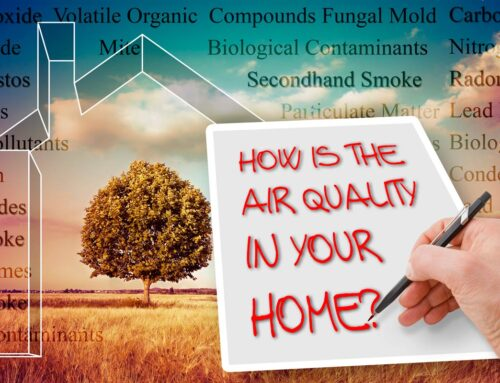 Some Particulates Harm Indoor Air Quality More Than Others